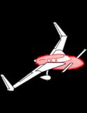 AeroCanard SB Turtle-Back