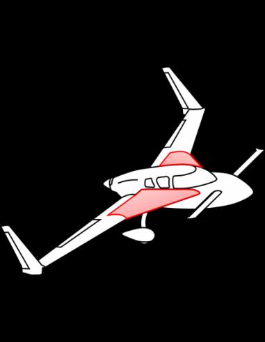 AeroCanard Wings w/ Center Spar Set