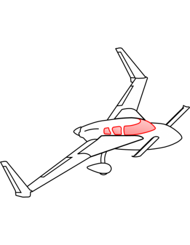 R1145MS Roncz Canard - AeroCanard