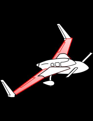 AeroCanard Main Wings
